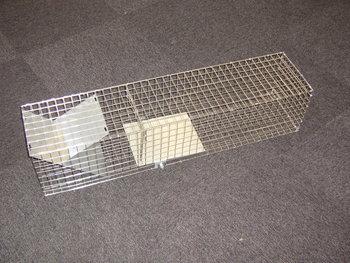 Ratten vangkooi 01