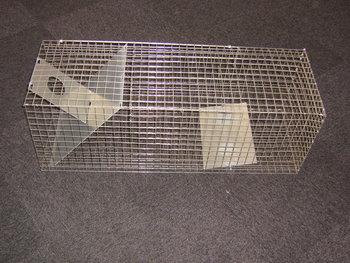 Ratten vangkooi 04.